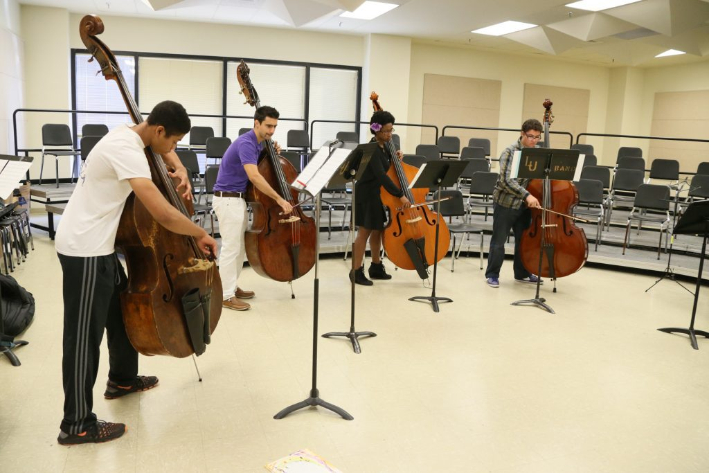 Double Bass Section Performance